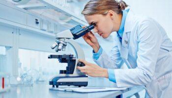 seo-on-page-indicadores-de-qualidade-3-principais-para-laboratorios-de-analises-clinicas-1000x500